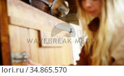 Woman open the horse stable door 4k. Стоковое видео, агентство Wavebreak Media / Фотобанк Лори