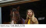 Woman standing with horse in stable 4k. Стоковое видео, агентство Wavebreak Media / Фотобанк Лори