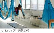 Women doing yoga on hammock 4k. Стоковое видео, агентство Wavebreak Media / Фотобанк Лори