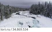 Stream flowing through snowy forest during winter 4k. Стоковое видео, агентство Wavebreak Media / Фотобанк Лори