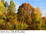 Autumn landscape. Lake in Mitino picturesque Landscape Park. Moscow, Russia. Стоковое фото, фотограф Валерия Попова / Фотобанк Лори