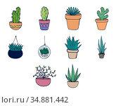 Vector icon set of plants icon. Стоковое фото, агентство Wavebreak Media / Фотобанк Лори