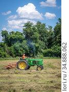 Wuffle Hay in field. Редакционное фото, фотограф Edwin Remsberg / age Fotostock / Фотобанк Лори