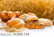 lot of different flavored bread, wheat, rye, on the table in the field outside. Стоковое фото, фотограф Татьяна Яцевич / Фотобанк Лори