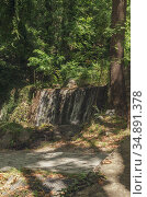Waterfall in the forest on a sunny summer day. Стоковое фото, фотограф Татьяна Ляпи / Фотобанк Лори