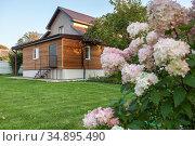 Country house and backyard with beautiful flowers and green lawn, nobody, horizontal image. Стоковое фото, фотограф Кекяляйнен Андрей / Фотобанк Лори
