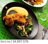 Tandoori chicken with salad and sauce. Стоковое фото, фотограф Яков Филимонов / Фотобанк Лори
