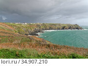 Housel Bay with Housel Hotel set back from the cliffs, The Lizard, Cornwall, UK, October 2019. Стоковое фото, фотограф Nick Upton / Nature Picture Library / Фотобанк Лори