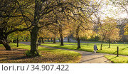 Walkers and cyclists in Kelvingrove Park, Glasgow, Scotland, UK, November. Стоковое фото, фотограф Niall Benvie / Nature Picture Library / Фотобанк Лори