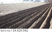 Closeup of furrows of fertile soil on ploughed farm field prepared for planting crops in spring. Стоковое видео, видеограф Яков Филимонов / Фотобанк Лори