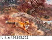 Liljefors Bruno - Fox Chased by Hounds 2 - Swedish School - 19th ... Редакционное фото, фотограф Artepics / age Fotostock / Фотобанк Лори