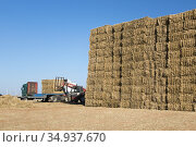 Large bales of straw are loaded on wagons by Bulgarian farm workers... Стоковое фото, фотограф Andre Maslennikov / age Fotostock / Фотобанк Лори