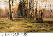 Brovar Yakov - Bialowieza Forest - Russian School - 19th Century. Стоковое фото, фотограф Artepics / age Fotostock / Фотобанк Лори