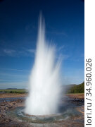 Strokkur geyser erupting. Haukadalur, Iceland. July 2009. Стоковое фото, фотограф Guy Edwardes / Nature Picture Library / Фотобанк Лори