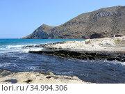 Aguilas, Cabo Cope. Parque Regional de Cabo Cope y Puntas de Calnegre... Стоковое фото, фотограф J M Barres / age Fotostock / Фотобанк Лори