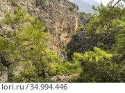Wanderweg durch die Schlucht von Lissos bei Sougia, Kreta, Griechenland... Стоковое фото, фотограф Peter Schickert / age Fotostock / Фотобанк Лори