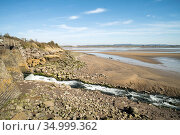 Severn Estuary at low tide from Lydney harbour Gloucestershire, England, UK. March 2020, Стоковое фото, фотограф John Waters / Nature Picture Library / Фотобанк Лори