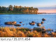 Камни на берегу Белого моря на Соловках и Мыс Лабиринтов. Стоковое фото, фотограф Baturina Yuliya / Фотобанк Лори