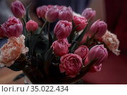 Bouquet of beautiful flowers with purple peony roses, carnations and tulips, in the craft paper. Стоковое фото, фотограф Julia Shepeleva / Фотобанк Лори
