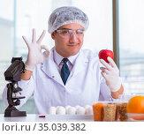 Nutrition expert testing food products in lab. Стоковое фото, фотограф Elnur / Фотобанк Лори