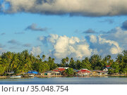 Fakarava coast, Tuamotus Archipelago French Polynesia, Tuamotu Islands... Стоковое фото, фотограф Sergi Reboredo / age Fotostock / Фотобанк Лори