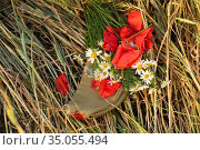 Still life with garrison cap and a bouquet of poppies and daisies. Стоковое фото, фотограф Марина Володько / Фотобанк Лори