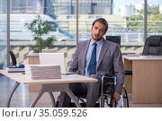 Young male employee in wheel-chair working in the office. Стоковое фото, фотограф Elnur / Фотобанк Лори