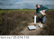 Researcher emptying pitfall trap used to collect Ground beetles (Carabidae). Long-term monitoring has revealed a 72 percent reduction in Ground beetle... Стоковое фото, фотограф Edwin Giesbers / Nature Picture Library / Фотобанк Лори