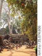 Temple of Ta Prohm in Angkor (2013 год). Редакционное фото, фотограф Юлия Бабкина / Фотобанк Лори