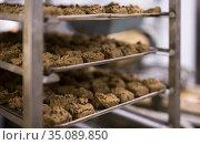 Dough on tray, process of baking bread. Стоковое фото, фотограф Яков Филимонов / Фотобанк Лори
