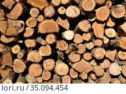 Texture of wooden logs. Стоковое фото, фотограф Арестов Андрей Павлович / Фотобанк Лори