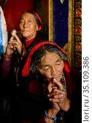 Tibetan pilgrims making kora, a sacred pilgrimage around Gonchen Gompa / Derge Monastery. Derge, Garze Tibetan Autonomous Prefecture, Sichuan, China. 2016. Стоковое фото, фотограф Enrique Lopez-Tapia / Nature Picture Library / Фотобанк Лори