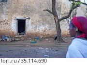 Hawzen town, Eastern Tigray, Ethiopia. Celebration birth in the village... (2020 год). Редакционное фото, фотограф Sergi Reboredo / age Fotostock / Фотобанк Лори
