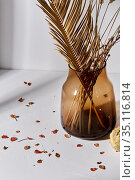 decorative dried flowers in glass vase and petals. Стоковое фото, фотограф Syda Productions / Фотобанк Лори
