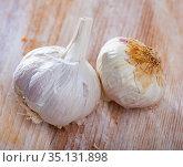 Many garlic on a wooden surface. Стоковое фото, фотограф Яков Филимонов / Фотобанк Лори