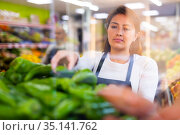 Female supermarket employee in apron lays fresh bell peppers on counter. Стоковое фото, фотограф Яков Филимонов / Фотобанк Лори