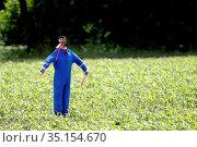 A scarecrow in a field. France. Стоковое фото, фотограф Fred de Noyelle / Godong / age Fotostock / Фотобанк Лори