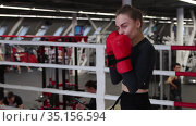 Young woman training her boxing on the ring in the gym. Стоковое видео, видеограф Константин Шишкин / Фотобанк Лори