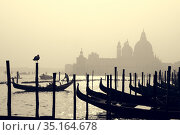 Romantic Italian city of Venice, a World Heritage Site: traditional Venetian wooden boats, gondolier and Roman Catholic church Basilica di Santa Maria della Salute in the misty background. Стоковое фото, фотограф Matej Kastelic / Фотобанк Лори