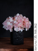 Floral beautiful artistic still life, design and interior details. Artificial pink hydrangea in a black ceramic vase on a wooden table on a black dark background in an old rustic vintage style with a copy space. Стоковое фото, фотограф Светлана Евграфова / Фотобанк Лори