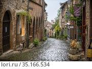 Medieval town of Cordes sur Ciel, labelled The Most Beautiful Villages... Стоковое фото, фотограф Sergi Reboredo / age Fotostock / Фотобанк Лори