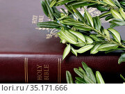 Bible and boxwood branch. Holy week and Palm Sunday celebration. ... Стоковое фото, фотограф Pascal Deloche / Godong / age Fotostock / Фотобанк Лори