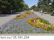 Цветочная клумба на Приморском бульваре в городе Севастополе, Крым (2020 год). Редакционное фото, фотограф Николай Мухорин / Фотобанк Лори