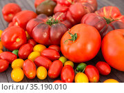 different varieties of ripe red and yellow appetizing tomatoes. Стоковое фото, фотограф Татьяна Яцевич / Фотобанк Лори