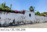Wall in garden with flowers in bloom in Antigua, Guatemala. Стоковое фото, фотограф Николай Коржов / Фотобанк Лори