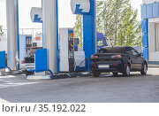 Car refueling at a gas station. Стоковое фото, фотограф Юрий Бизгаймер / Фотобанк Лори