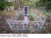 Cemetery in abandoned Zymovyshche village Chernobyl Nuclear Power... Стоковое фото, фотограф Konrad Zelazowski / age Fotostock / Фотобанк Лори
