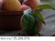 Персик на столе. Стоковое фото, фотограф Татьяна Шикова / Фотобанк Лори