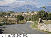 Cas Canar, Sencelles, Mallorca, Balearic Islands, Spain. Стоковое фото, фотограф Tolo Balaguer / age Fotostock / Фотобанк Лори