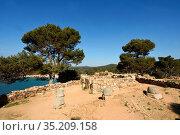 Iberian ruins of Castell, Palamos, Costa Brava, Girona Province, Catalonia... Стоковое фото, фотограф Josep Curto / easy Fotostock / Фотобанк Лори